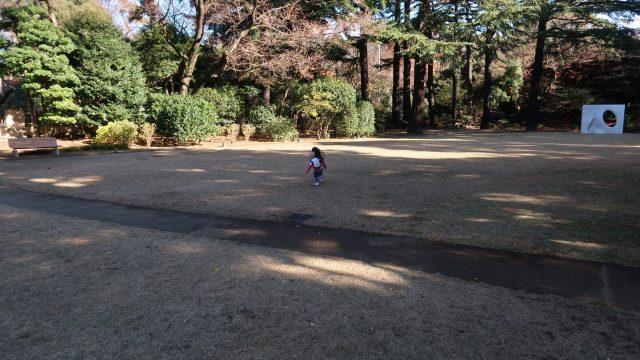 東京都庭園美術館の庭で遊ぶ(秋)