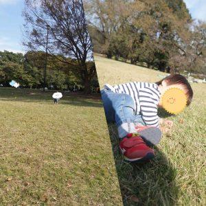砧公園芝生の上で遊ぶ男の子の画像